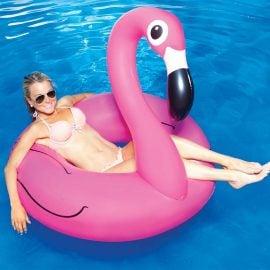 Жена с Голямо Надуваемо Фламинго в Басейн