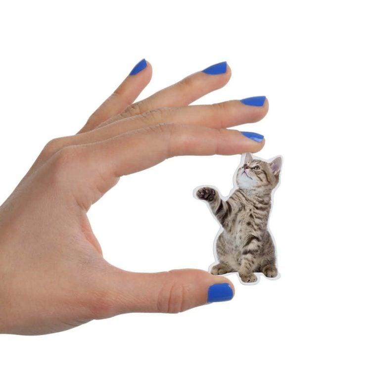 Магнит за Хладилник - Котенце в Ръка