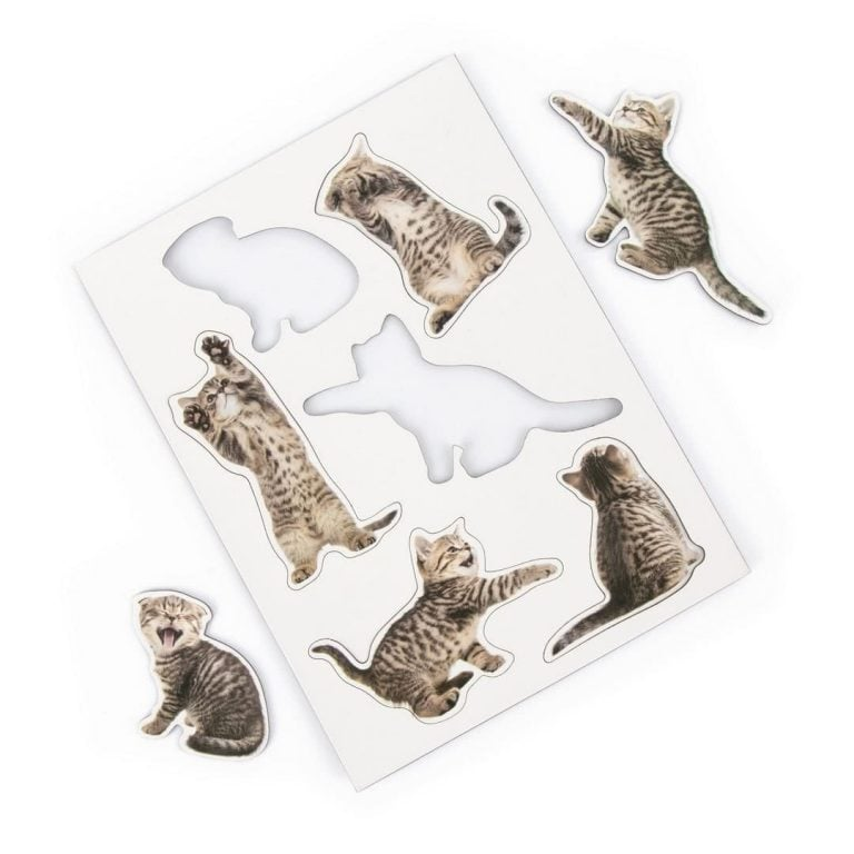 Магнити за Хладилник - Котенца
