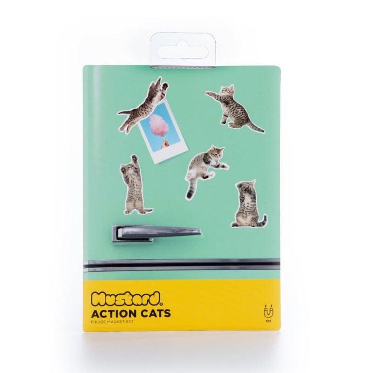 Магнити за Хладилник - Котенца в Кутия