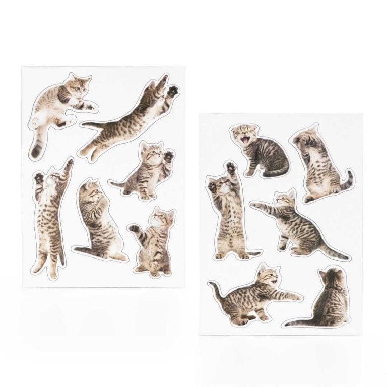 Магнити за Хладилник - Котенца на Лист