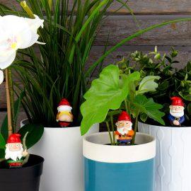 Декорация за Саксии – Naughty Gnomes